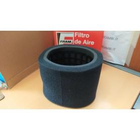 FILTRO ARIA FRAM CA4760