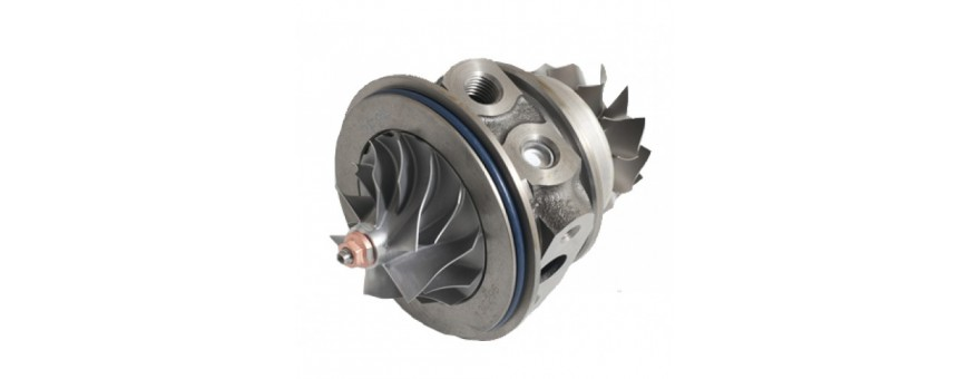 CORE ASSY TURBINA